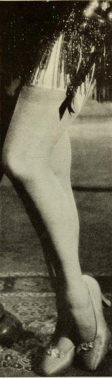 Marlene Dietrich's legs