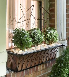 Wintry Window Sills     Turn your dormant window planters into decoration space by planting hardy shrubs. Simple wire stars and glowing white lights add holiday spirit
