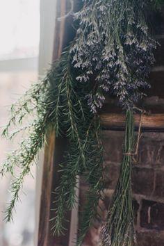 twigs & moss