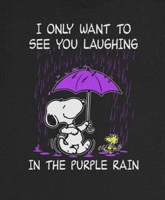 Purple rain - Joleen Home Peanuts Quotes, Snoopy Quotes, Prince Purple Rain, Purple Love, All Things Purple, Purple Stuff, Charlie Brown And Snoopy, Purple Reign, Snoopy And Woodstock