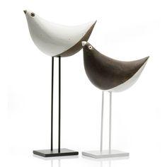 Animalarium: The Bird is on the Table