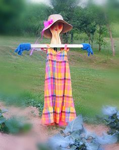 Scarecrow in garden I know it's going to be hard to give up that sun dress and hat but it's for a good cause.