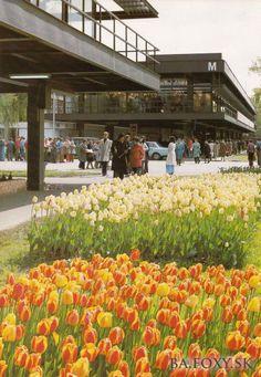 Bratislava, Flora, Nostalgia, Architecture, Memories, Plants, Times, Park, Retro