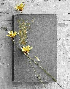 pale yellow,by Tsahizn | Flickr - Photo Sharing!