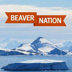 Beaver Nation The World