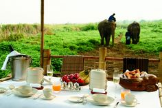 Four Seasons Tented Camp - Experience Thailand's Golden Triangle in a most unique way #XOPrivate #Thailand