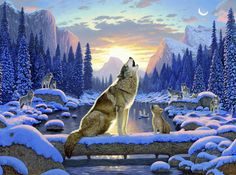 Sitting Wolf And Cub   Wall Mural U0026 Photo Wallpaper   Photowall Part 82