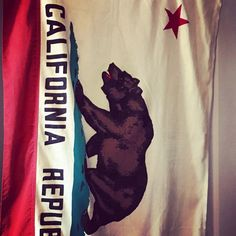 Vintage California Republic Flag by ApothecaryD on Etsy