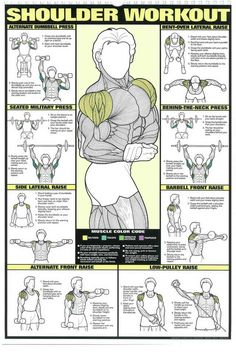training workouts The Absolute Beginner's Guide to Exercise – Img… - Blackroll Fitness Workouts, Weight Training Workouts, Fun Workouts, Fitness Motivation, Lifting Workouts, Workouts For Men, Back Workouts, Bodybuilding Training, Bodybuilding Workouts