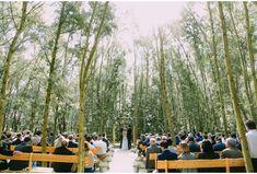 Cape Town Wedding Planner Advice: Wedding Venues In Cape Town Part 1 - The Wedding Fairy Cape Town Wedding Venues, Forest Wedding Venue, Wedding Cape, Luxury Wedding Venues, Woodland Wedding, Elope Wedding, Farm Wedding, Wedding Bells, Wedding Decor
