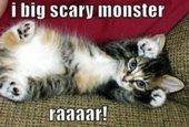 Monster...