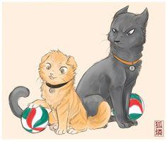 KageHina Kitties — Weasyl