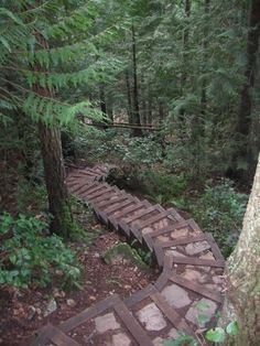 They are stairs (and this is technically about paths) but they are beautiful, natural, gently curving, and path-like. — at Somewhere On Earth :). Garden Steps, Garden Paths, Casa Patio, Stairway To Heaven, Outdoor Projects, Pathways, Stairways, Garden Inspiration, The Great Outdoors