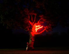 Live Forever takes the form of a neon sign, replicating a hand written piece of text. The neon message pulses slowly on and off, illuminating the tree that it's set within. Glasgow School Of Art, Art School, Environmental Art, Throughout The World, Artist At Work, Art Projects, Neon Signs, Live, Environmental Design