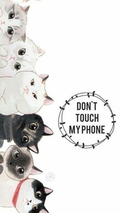 cat wallpaper More Pins for your board fondos de p - cat Cute Cat Wallpaper, Kawaii Wallpaper, Cute Wallpaper Backgrounds, Animal Wallpaper, Disney Wallpaper, Cartoon Wallpaper, Wallpaper Desktop, Girl Wallpaper, Wallpaper Quotes