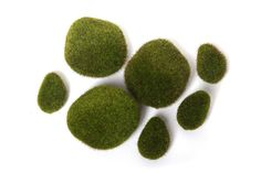 Hosley's Moss Balls Vase Filler - .7 oz. Ideal for Vases, Table Decor, Weddings, Parties, Special Events. O3