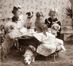 Today's picture was taken in 1906, and shows a Tea Party which includes a number of dogs. I remember that when my daughter was small, she w...
