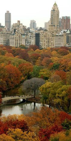 Central Park Autumn Glory, New York Dad & I celebrated our anniversary ( and my first trip to) NYC. It looked just like this & I fell in love w/ the greatest city in the world. I am so happy you are building a great life there! Central Park New York, Central City, Places To Travel, Places To See, Travel Destinations, New York Weihnachten, New York City, Ville New York, Voyage New York