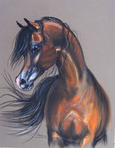 Art - Pogrom by QR Marc Horse Drawings, Art Drawings, Arabic Horse, Horse Cartoon, Pur Sang, Colored Pencil Artwork, Arabian Art, Body Sketches, Beauty In Art