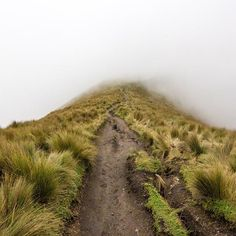 Into the fog. Hiking 15,407ft up the Pichinca Volcano in Quito, Ecuador  ----------------------------------- #quito #pichincha #volcano #ecuador #southamerica #sabackpacker #passionpassport #bbctravel #natgeo #ngtradar #lp #skimbaco #traveldeeper #travelstoke #instatravel #instapassport #travel #traveling #travelling #travelphotography #travelgram #travel #wanderlust #followme