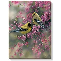 Goldfinches in Spring Wrapped Canvas Art