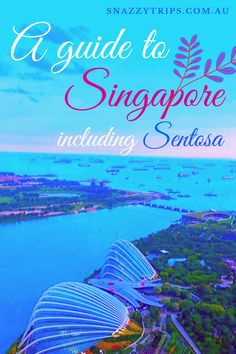 A handy guide to the epic sites to explore in Singapore over a few days, that you don't want to miss. Details of main attractions are covered in this article. Singapore Guide, Singapore Travel Tips, Singapore Sling Cocktail, Girls Vacation, Vacation Ideas, Indoor Waterfall, Sands Hotel, Gardens By The Bay, Palawan