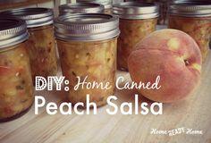 DIY: Home Canned Peach Salsa (Home Ready Home)