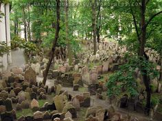 Old jewish cemetery de Praga
