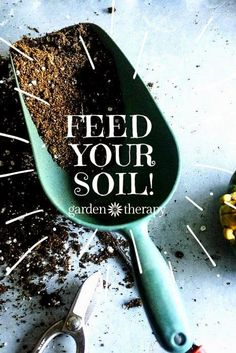 The secret to growing the healthiest most beautiful plants is right in your backyard! Feed your soil!  From Elizabeth Murphy, author of the book, Building Soil: A Down-to-Earth Approach: Natural Solutions for Better Gardens & Yards. | Garden Therapy