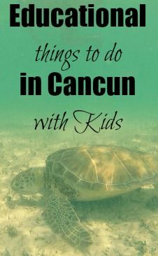 Cancun and Mexico's Riviera Maya is so much more than all-inclusive resorts and lazy days on the beach. Especially if you're considering taking your kids out of school to travel to Mexico, consider building in some educational (and fun!) activities for the whole family.  Here are three educational things to do in Cancun with kids.