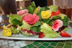 Categoria de Culinária - Página 20 de 21   Segs.com.br-Portal Nacional Clipp Notícias para Seguros Saúde