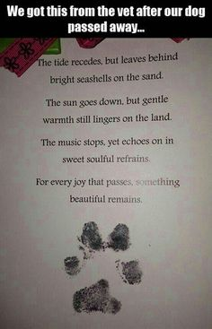 His Ten Year Old Dog Passed Away. Afterward, He Got This Unexpected Note From His Veterinarian. Dog Quotes, Animal Quotes, Dog Poems, I Love Dogs, Puppy Love, Dog Passed Away, Pet Loss Grief, Old Dogs, Rainbow Bridge