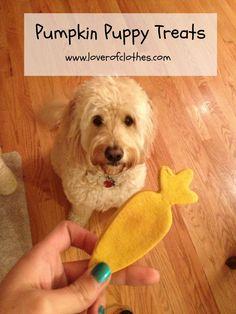 12 besten Dog Stuff Bilder auf Pinterest   Hundejacke, Hundeleine ...