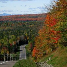 Rt 11 Ashland, Maine in the fall.
