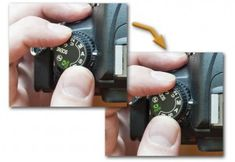Tips on using the Nikon D7000 Fine-tuning the Autofocus