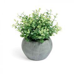 Kave Home Planta Zelena eucaliptus, en Papel,Plástico - Verde,Gris
