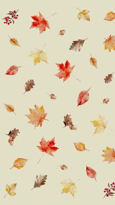 All things shabby and beautiful cute wallpapers, cute backgrounds, phone backgrounds, wallpaper backgrounds Halloween Backgrounds, Cute Backgrounds, Phone Backgrounds, Cute Wallpapers, Wallpaper Backgrounds, Halloween Wallpaper, Phone Wallpapers, Iphone Wallpaper Herbst, Cute Wallpaper For Phone