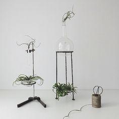 vintage-labware-beaker-plant-stand-gardenista