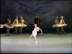 Ballet Cupid Variation Don Quixote: Anastasia Stashkevich- Wow!!! She is really good! I love the quick and sharp movements in the variation!