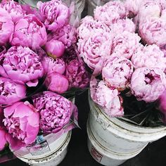 < The most beautiful flowers > Good morning babes via @sincerelyjules #piones #flowers #pink #lovely #spanglishfashion by spanglishfashion