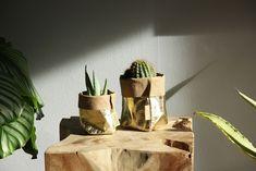 de Zaktus | Inspiration | Home Planter Pots, Inspiration, Biblical Inspiration, Inspirational, Inhalation
