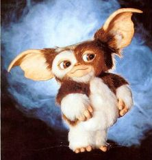 I enjoyed Gremlins movie a lot as a kid when I used to have an imaginary friend like Gizmo. I hope they genetically engineer him in the future :P 80s Movies, Scary Movies, Horror Movies, Good Movies, Gremlins Gizmo, Film Mythique, Cultura Pop, Movie Characters, The Good Old Days