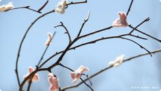 DIY Cherry Blossom Tree Craft Felted Flowers