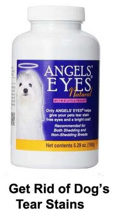Get Rid Of Dog Tear Stains