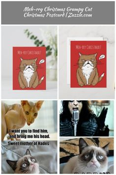 Meh-rry Christmas Grumpy Cat Christmas Postcard , #AFF, #Grumpy#Cat#Postcard#Christmas #Ad Grumpy cats Meh-rry Christmas Grumpy Cat Christmas Postcard   Zazzle.com Grumpy Cat Christmas, Christmas Ad, Grumpy Cats, Africa, Places To Travel, Traveling