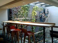 Jardín Vertical interior de la Cafetería Juan Valdez, Bogotá, Colombia