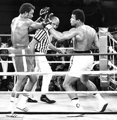 The famous 1974 Rumble in the Jungle between Muhammad Ali (R) and his compatriot and the titleholder George Foreman in Kinshasa George Foreman, Mohamed Ali, Marie Curie, Mike Tyson, Steve Jobs, Muhammad Ali Children, Audrey Hepburn, Rugby, Einstein
