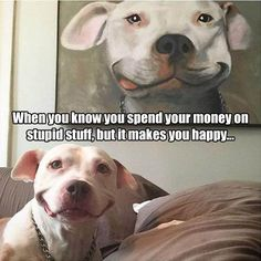 Funny Pictures Of The Day - 36 Pics