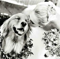 Besar a tu perro, la nueva moda en las fotos de boda   ActitudFEM