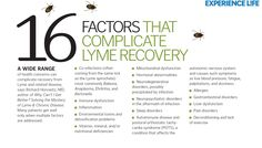 16 Factors that Complicate #Lyme Recovery. #health #infographic #wellness #tick #tick-borne #disease